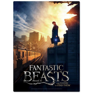 Additional image of FANTASTIC BEASTS AND WHERE TO FIND THEM™ New York City 500 Piece Puzzle