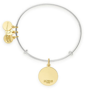 Additional image of ALEX AND ANI Harry Potter Hogwarts is My Home Two Tone Charm Bangle