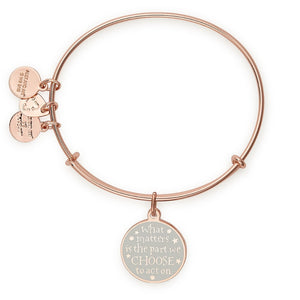 Additional image of ALEX AND ANI Harry Potter Light and Dark Charm Bangle