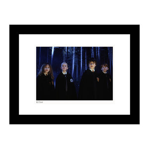 The Forbidden Forest Framed Print from Harry Potter and the Sorcerer's Stone