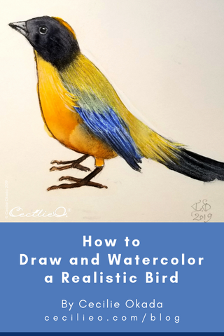 How to Draw and Watercolor a Realistic Bird