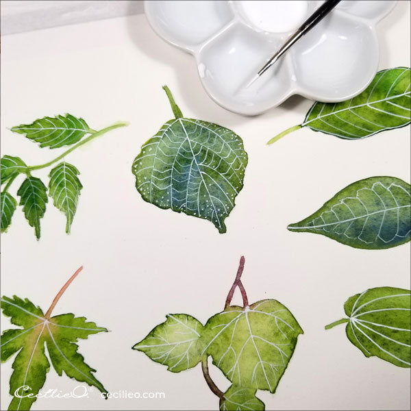 Painting the veins of each leaf with white gouache, using a very fine brush.