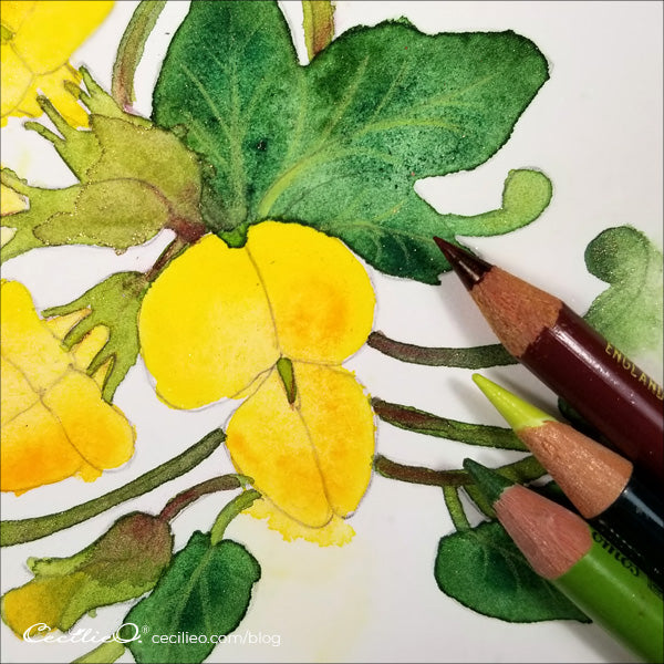 When the watercolors are all dry, draw in the veins of the leaves with colored pencil