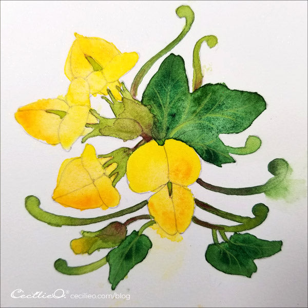 The watercolor of the yellow flower is all done