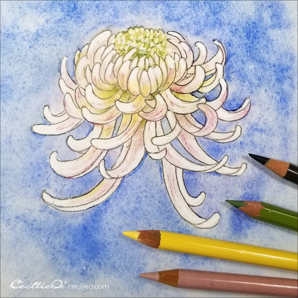 Adding depth with colored pencils