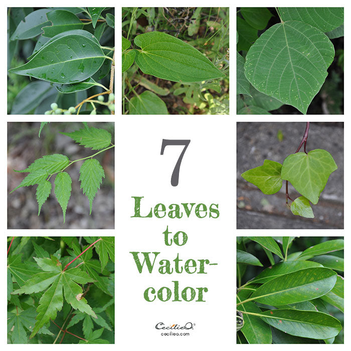 7 leaves to watercolor. Photo collage.