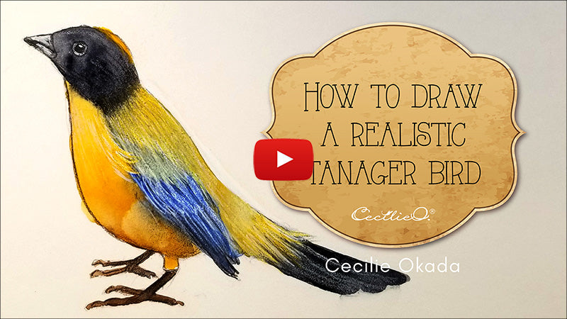 How to draw and watercolor a realistic bird. Video tutorial.
