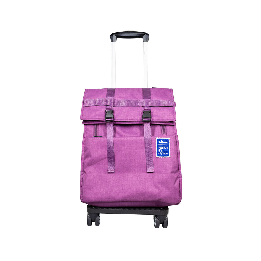 CITYSUPER 4 Double Wheels Fold-Up Expandable Trolley Folding With Strap-Purple Melange