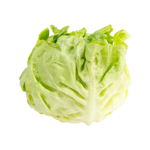 French Butter Lettuce  (300g)