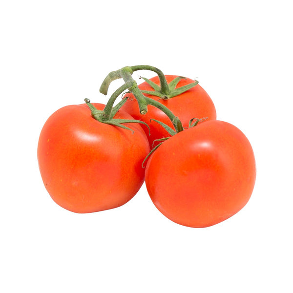 Dutch Red Tomato On Vine  (500g)