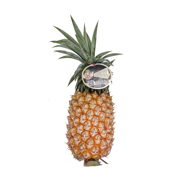 Taiwanese Golden Pineapple  (1pc)