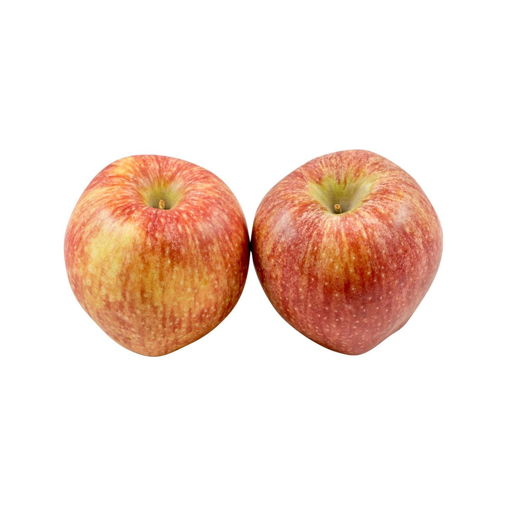 French Gala Apple  (1pack)