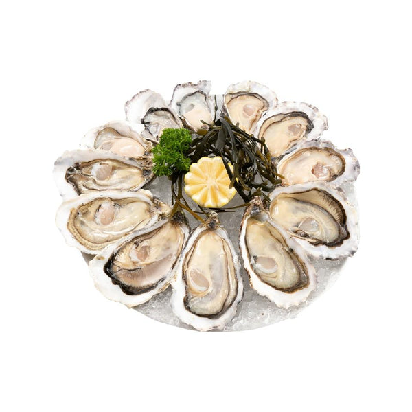 Deluxe Oyster Set  (12pcs)
