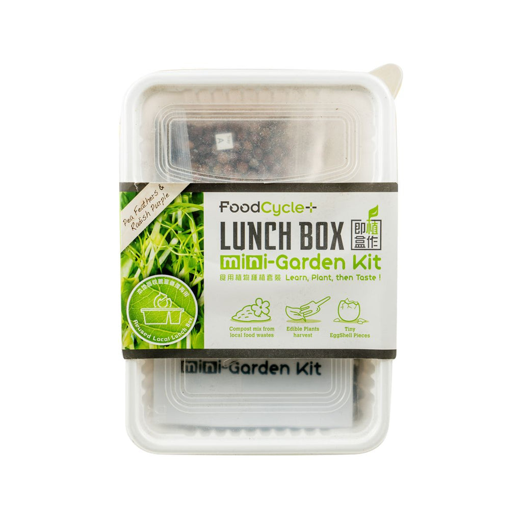 Lunch Box Mini-Garden Kit(1pack)