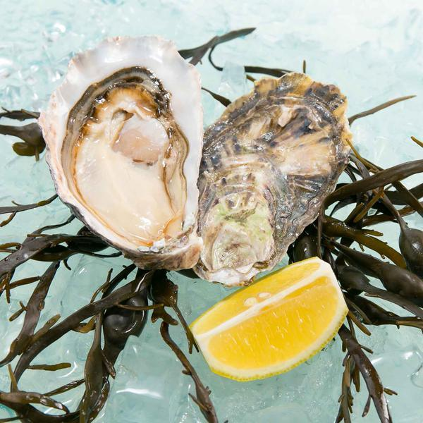Namibian Pacific Oyster  (1pc)