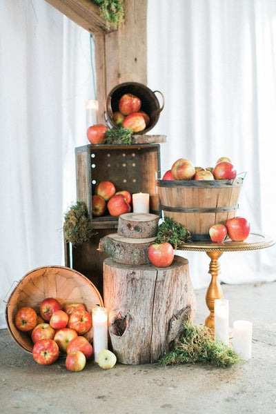 orchard wedding decor
