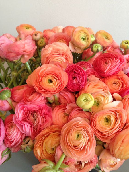 ranunculus wedding flowers