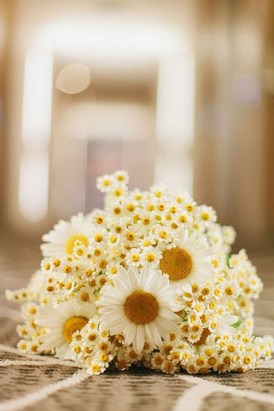 daisy wedding flowers bouquet