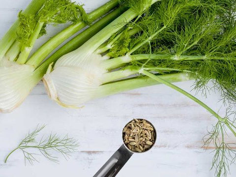 fennel wedding herb symbolism