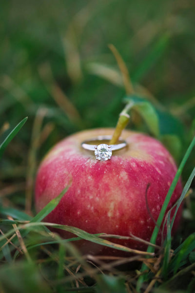 orchard wedding rings