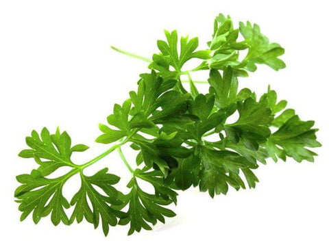 parsley wedding herb symbolism