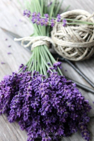 lavender wedding herb symbolism