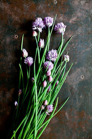 chives wedding herbs symbolism