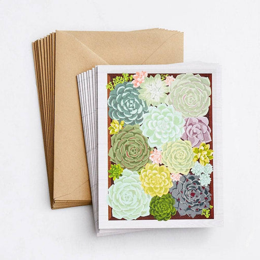 Succulent Notes (Box Set of 10)