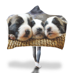 "Hooded Blanket 3 Puppies ""Shhh... I'm Sleeping"""