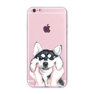 Cute Husky Transparent Soft iPhone Cases - Trekmor