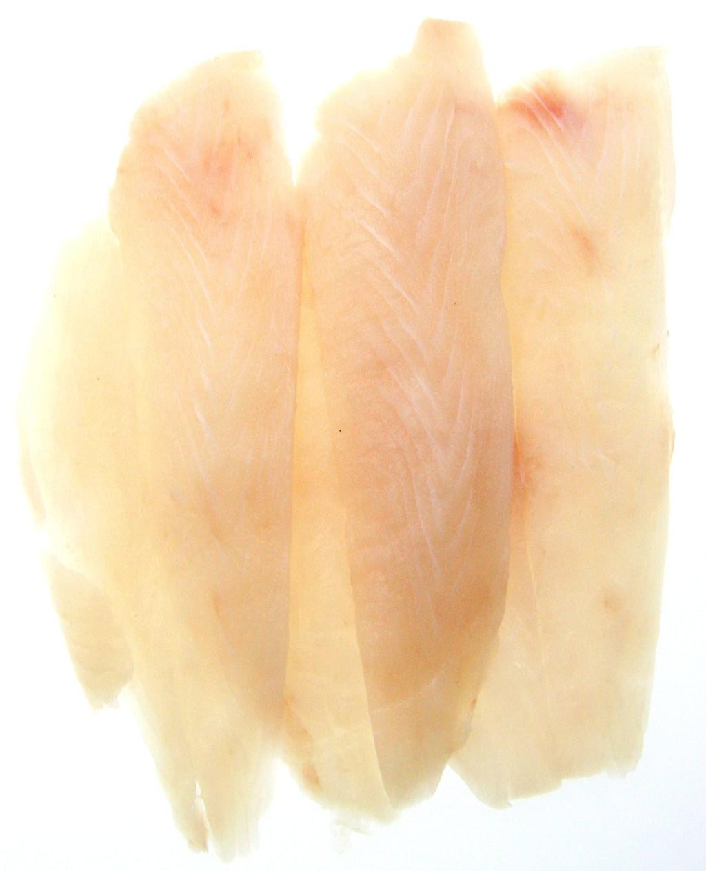 Coral Trout Fillets Skinless 5kg Ctn