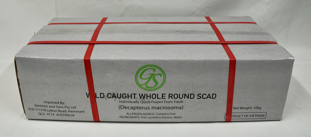Round Scad Whole 10kg Carton