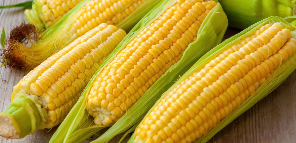 Corn Cobs Supersweet 2kg Bag