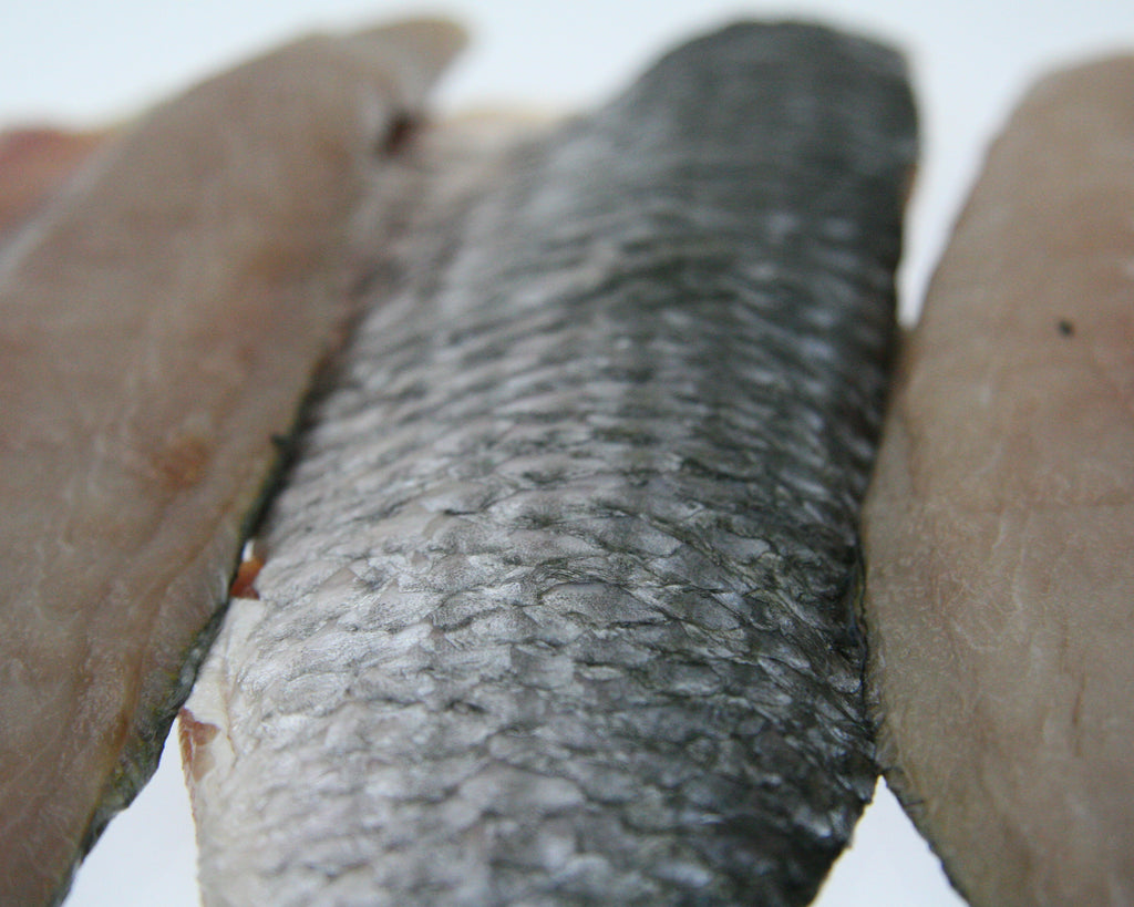 Mullet Fillets Skin On 5kg Ctn