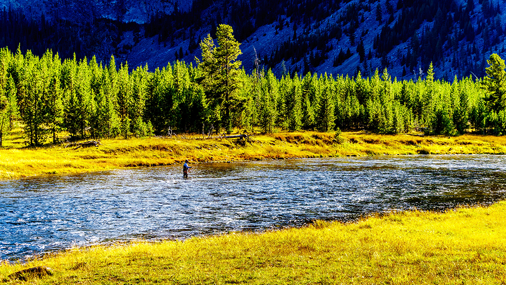 Welcome to Montana! The Anglers' Paradise