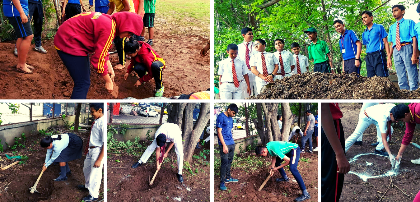 Organic Farming at Schools, Organic Food Forest at Schools, Bishops School Organic Food Forest, Farming at Schools india, Two Brothers organic Farms, TBOF