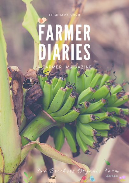 Farmer Diaries by TBOF, February 2020, Farmer Magazine, Farmer Publication, Two Brothers Organic Farms