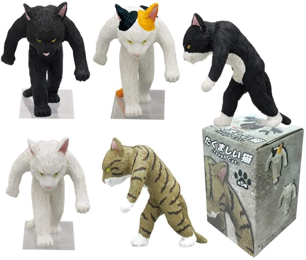 Kitan Club - Tough Cat Blind Box - Assorted Styles