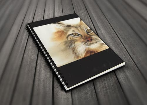 Go Wild! Blank Journal - Lynx