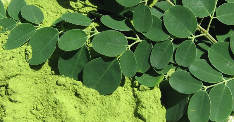 Move Over Spinach... Moringa is Here!!