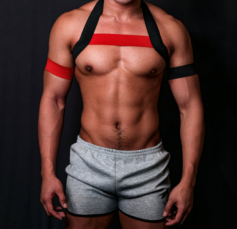 Timeless BLACK and Red Circuit Harness