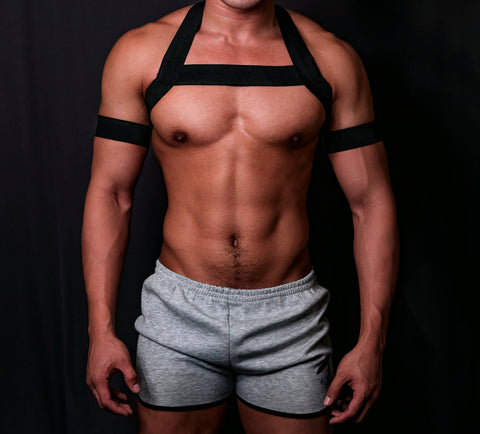 Timeless BLACK Circuit Harness