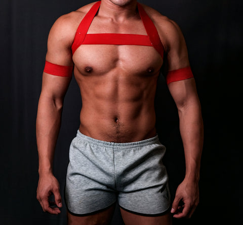 Timeless RED Circuit Harness