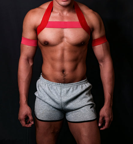 Festive RED - Pink Circuit Harness