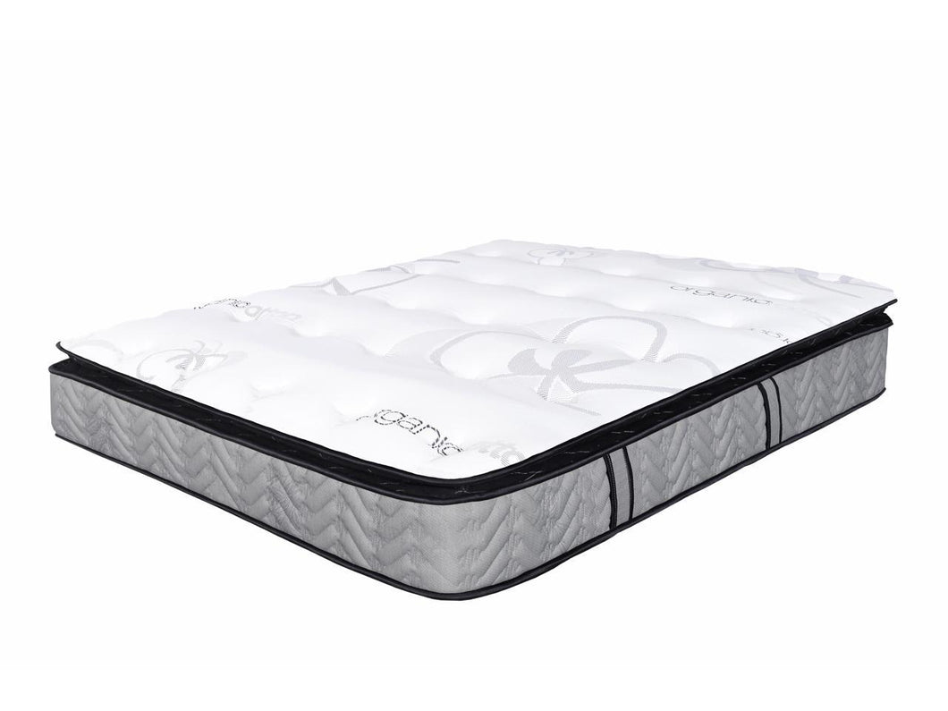 Organic 13in Orthopedic memory foam pillow-top pocketed coil mattress - medium plush - Mod Designs