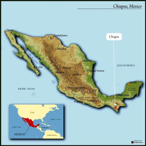 Mexico Chiapas | Medium Roast