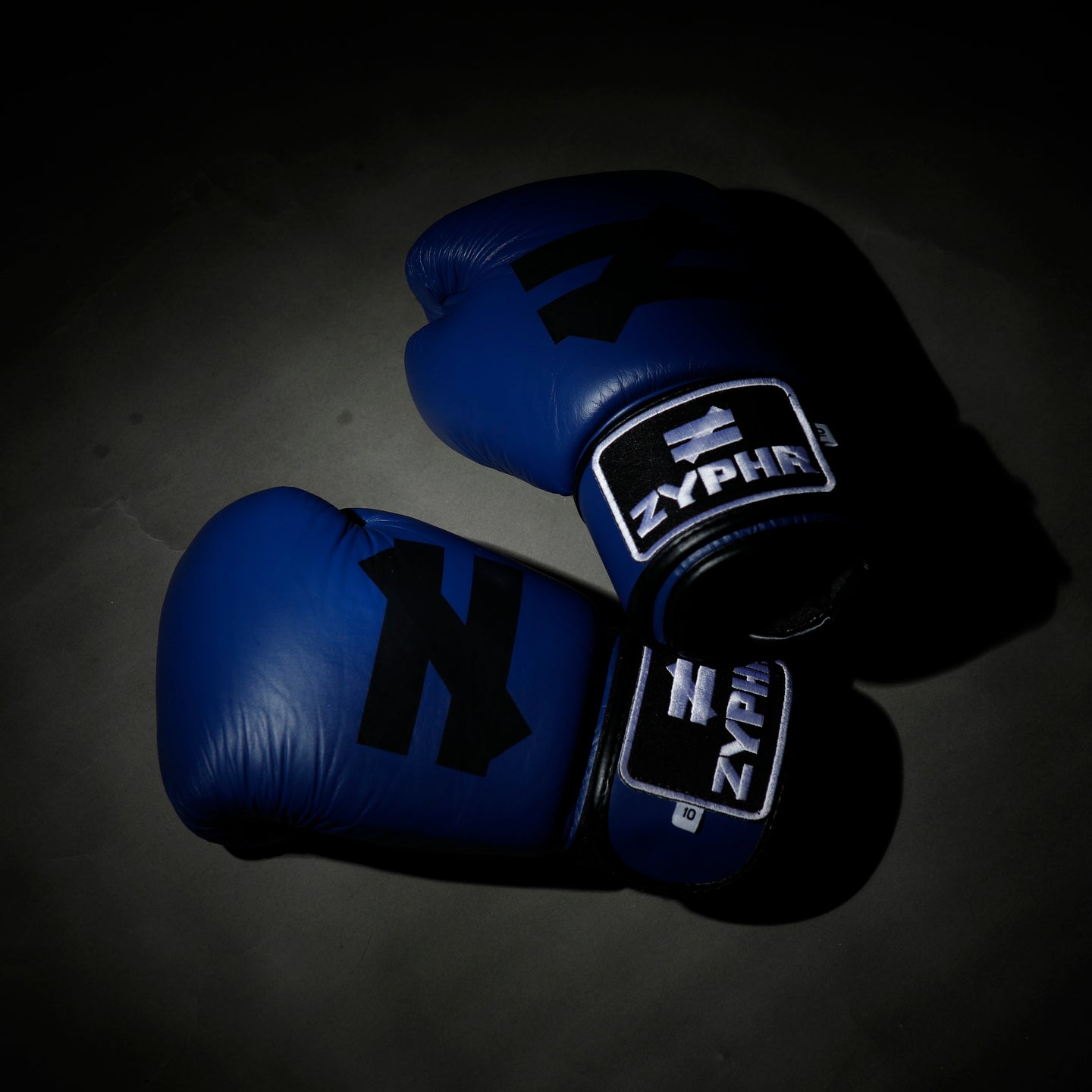 Muay Thai Combat Gloves in Blue