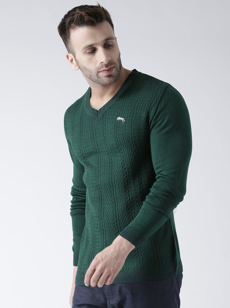 Men Green self Design Pullover
