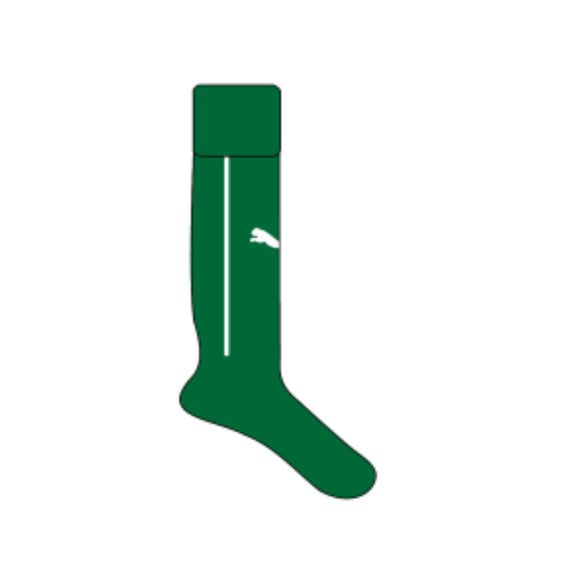 Ireland Rugby Home Playing Socks
