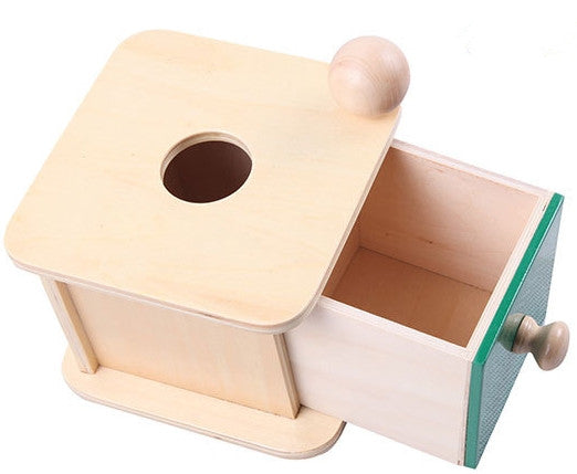 Montessori Kids Wood Ball Matching Box Learning Educational Preschool Training